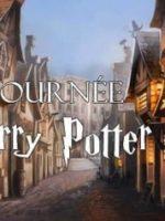 Harry potter - Animagie - Art Dû - Théâtre - 13006
